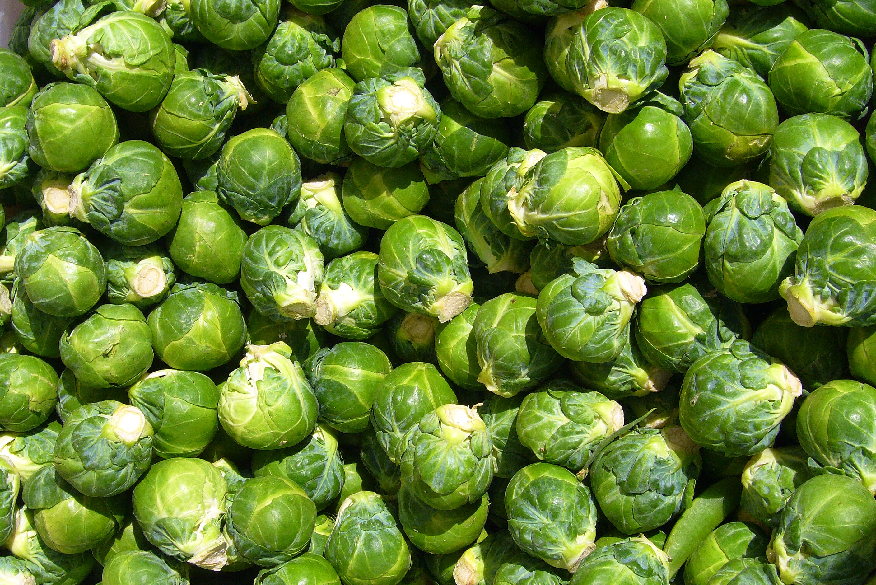 Brussels Sprouts with Mushrooms & Almonds - Dish by Dish
